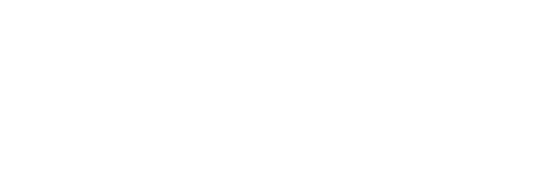 Logo BOLEGO IT-Services